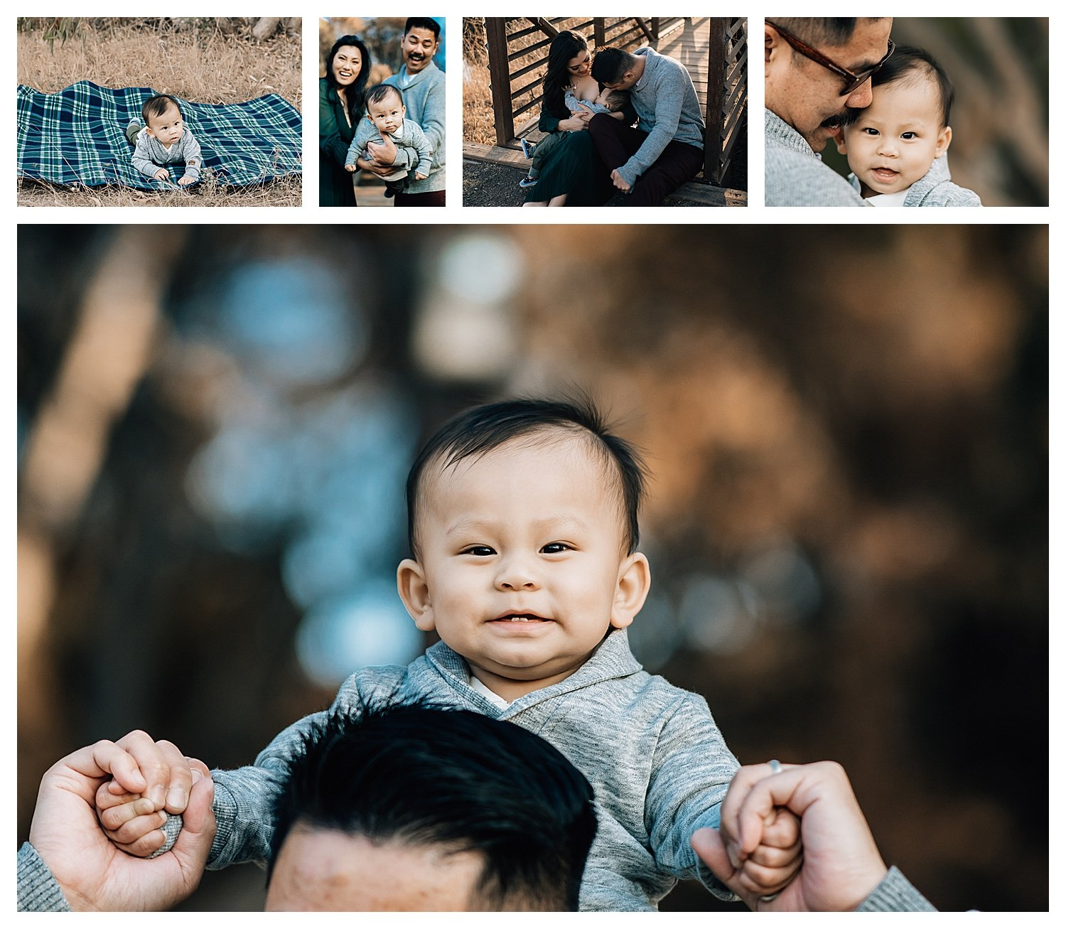 infant and family photos